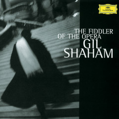 The Fiddler Of The Opera