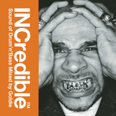 INCredible Sound of Drum'n'Bass Mixed by Goldie - Goldie