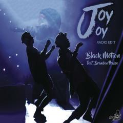 Joy Joy (Radio Edit)