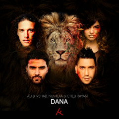 Dana (feat. Numidia) - Ali B, Cheb Rayan, R3hab, Numidia