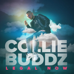 Legal Now (Single) - Collie Buddz
