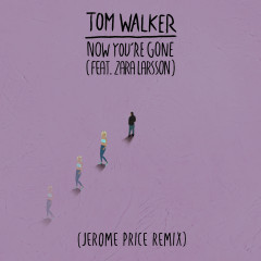 Now You're Gone (Jerome Price Remix) - Tom Walker, Zara Larsson