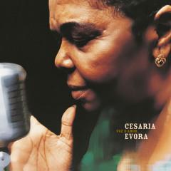 Voz d'Amor - Cesária Évora
