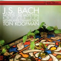 Bach, J.S.: 6 Motets - Ton Koopman, Ageet Zweistra, Margaret Urquhart, Maarten van der Heyden, Jan Kleinbussink