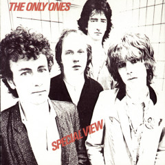 Special View - The Only Ones