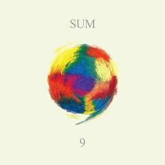 SUM (Interest ∞) The 9th Green Plugs Official Omnibus Album Part 1 - YB