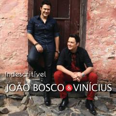 Indescritível (Live) - João Bosco & Vinicius