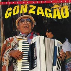 Forró de Cabo a Rabo - Luiz Gonzaga