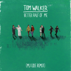 Better Half of Me (MJ Cole Remix) - Tom Walker