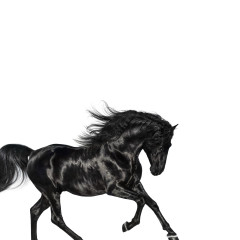Old Town Road - Lil Nas X