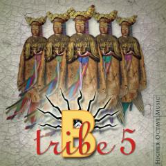 5 - B-Tribe