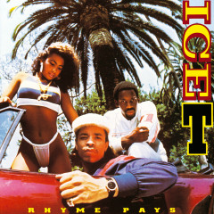 Rhyme Pays (Explicit Version) - Ice T