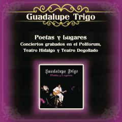 Poetas y Lugares Conciertos Grabados en el Polifórum, Teatro Hidalgo y Teatro Degollado - Guadalupe Trigo