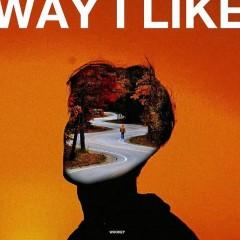 Way I Like - Wooks