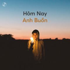 Hôm Nay Anh Buồn - Various Artists