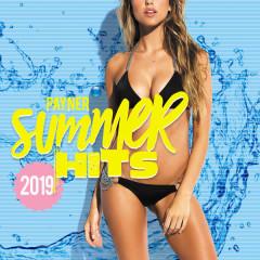 Payner Summer Hits 2019 - Various Artists