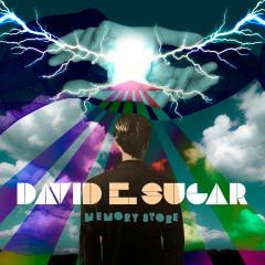Memory Store - David E. Sugar