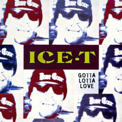 Gotta Lotta Love - Ice T