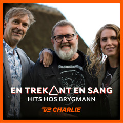 En Trekant En Sang 7 - Hits Hos Brygmann - Various Artists