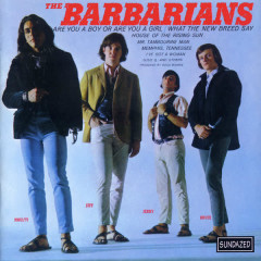 Are You A Boy Or Are You A Girl? - The Barbarians