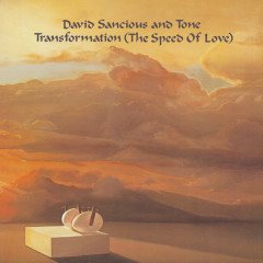 Transformation (The Speed of Love) - David Sancious, Tone