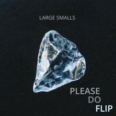 Please do flip - Large Smalls