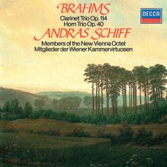 Brahms: Clarinet Trio; Horn Trio - Andras Schiff, Peter Schmidl, Günter Högner