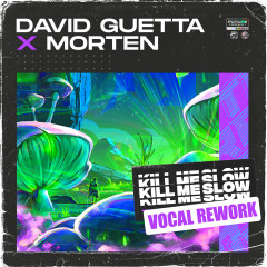 Kill Me Slow (Vocal Rework) - David Guetta, MORTEN