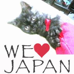 We Love Japan 2 - Various Artists