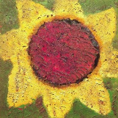 Sunflower - Never Shout Never