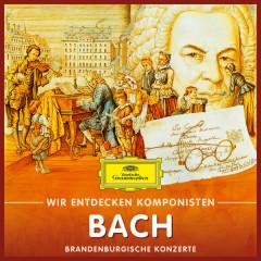 Wir entdecken Komponisten: Johann Sebastian Bach – Brandenburgische Konzerte - Will Quadflieg