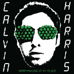 Merrymaking at My Place - Calvin Harris