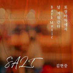 SALT - Kim Hyun Joong
