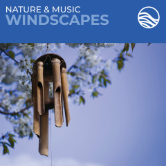 Nature & Music: Windscapes - David Arkenstone