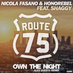 Own The Night (Alex Guesta Tribal Mix)