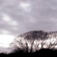 Winter into Spring EP - Ryosuke Tomita