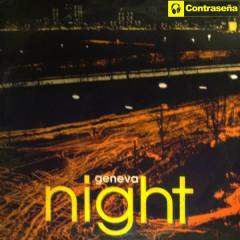 Night - Geneva
