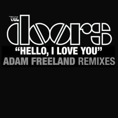 Hello I Love You (Adam Freeland Mixes) - The Doors