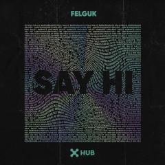 Say Hi - Felguk
