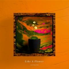 Like A Flower (Single) - Lim Chae Eon