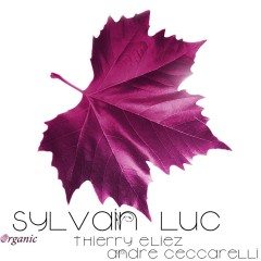 Organic (feat. Thierry Eliez & André Ceccarelli) - Sylvain Luc, Thierry Eliez, André Ceccarelli