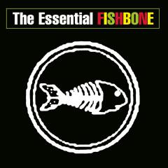 The Essential Fishbone - Fishbone