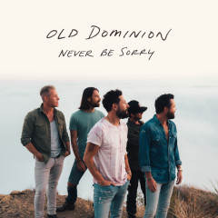 Never Be Sorry - Old Dominion