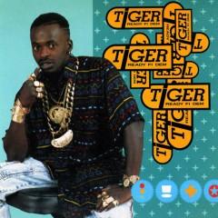 Ready Fi Dem - Tiger