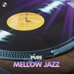 Pure Mellow Jazz
