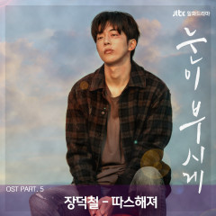 The Light in Your Eyes (Original Television Soundtrack), Pt. 5 - Jang Deok Cheol