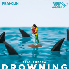 Drowning (feat. Sorana) - Franklin, Digital Farm Animals, Sorana