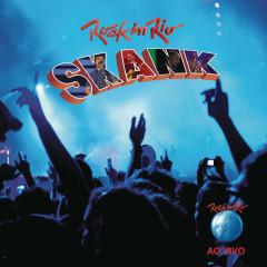 Rock in Rio 2011 - Skank - Skank