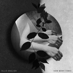 How Many Times (Single)