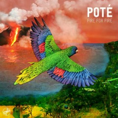 Fire for Fire - EP - Poté